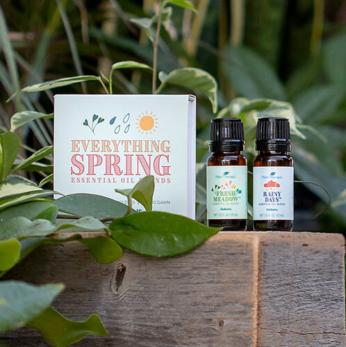 Summer Dreams Essential Oil Set