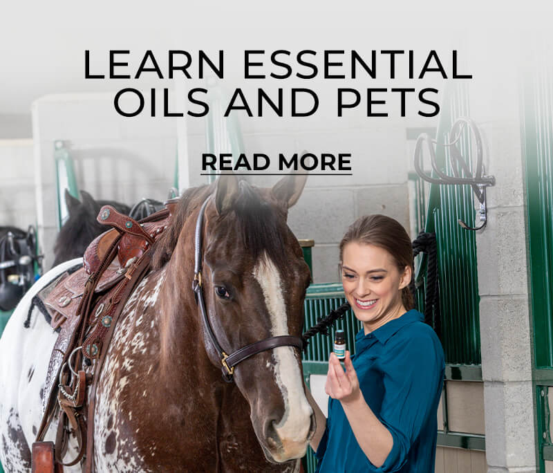 Learn about essential oils and pets - Read More