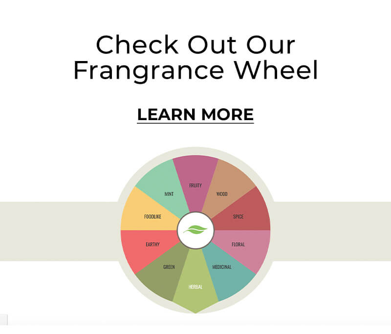 Check out our fragrance wheel - learn more